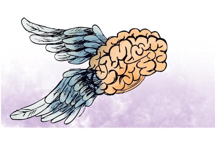 آمار مربوط به «فرار مغزها»؛ از واقعیت تا اغراق