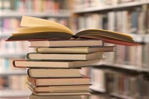 مدیر فرهنگی نهاد کتابخانههای عمومی کشور: تمرکززادیی از برنامههای نهاد کتابخانههای عمومی کشور