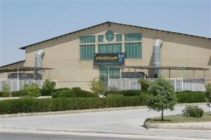 نشست علمی معرفی فرصتهای شغلی رشته مهندسی شیمی در واحد بوشهر برگزار شد