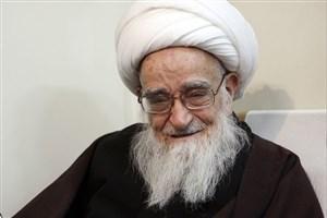 قدردانی آیت الله صافی گلپایگانی از مدیریت لاریجانی در مجلس