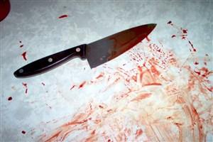 قتل جوان 27 ساله در خانه ویلایی تجریش