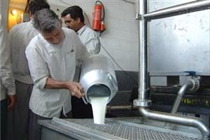 معاون امور دام : افزایش 100 تومانی قیمت خرید شیر از فردا