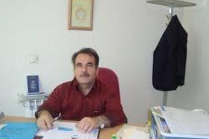 محمود کاری
