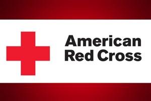 صلیب سرخ: برای حمله شیمیایی احتمالی داعش در موصل آمادهایم