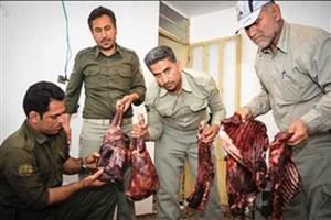 32شکارچی غیرمجاز در پناه گاه حیات وحش میانکاله دستگیر شدند