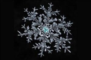 تخمین تعداد اشکال مختلف دانه های برف/ ۱ و ۷۶۸ صفر مقابل آن!