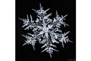 Canadian Photographer Creates Stunning Snowflake Photos