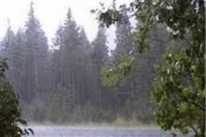 حجم بارشهای کشور به 35 میلیمتر رسید/ افت 59 درصدی نسبت به پارسال