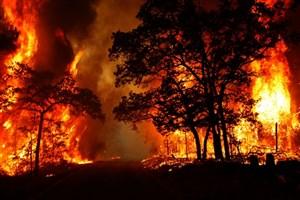 پرواز بیش از استاندارد بالگرد برای مهار آتش جنگل های پاسارگاد