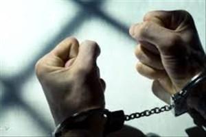 عامل اغفال دختران در فضای مجازی شناسایی و  دستگیر شد