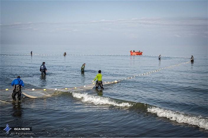 صید ماهی در دریای خزر