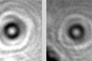 نخستین تصاویر از پروتئینهای منفرد ثبت شد