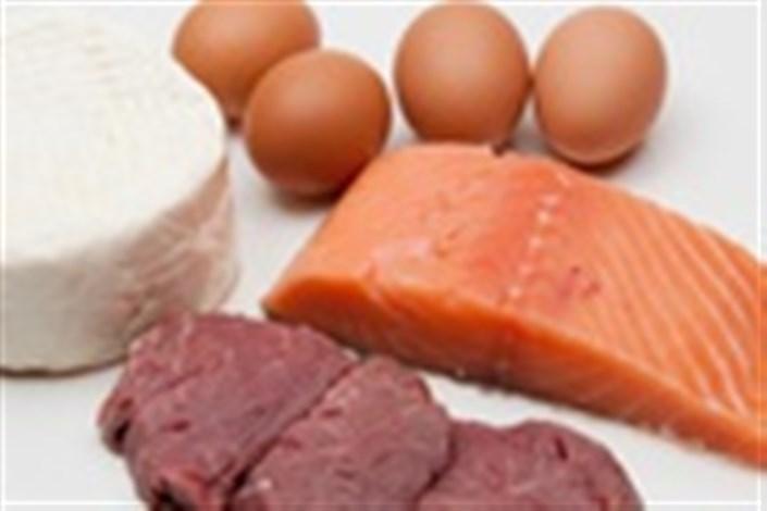 محصولات پروتئینی