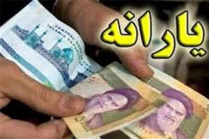گزارش دولت از عملکرد سازمان هدفمندی یارانهها
