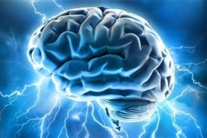 میزان ظرفیت حافظهی مغز انسان مشخص شد/منبع
