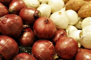 کشاورزی سنتی دلیل گرانی پیاز/قیمت عمده فروشی ۳۰۰۰ تومان