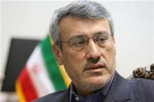 بعیدی نژاد: حمله موشکی ایران علیه داعش اراده ایران برای مقابله با تروریسم است