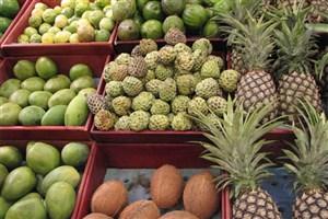 تشدید طرح برخورد با میوه قاچاق در بازارهای تهران