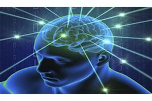 رابطه بین چربی خون و عملکرد مغزی