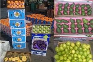 بازگشت مجدد میوه های قاچاق به مغازهها/ انگور شیلی ۴۵ هزار تومان