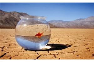سالانه 500 هزار نفر در جهان به دلیل تغییرات اقلیمی  می میرند