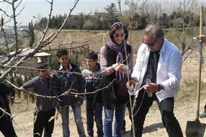 مراسم درختکاری در پردیسان/ هنرمندان از محیطزیست گفتند