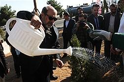مراسم کاشت نهال توسط ریاست دانشگاه آزاد اسلامی  به مناسبت روز شهید و هفته محیط زیست