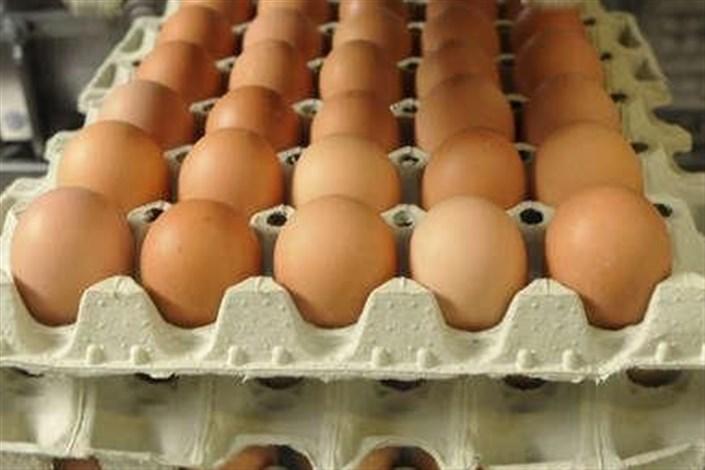 تخم مرغ شانه ای نخرید!