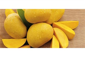 "میوه ای که ""بمب ویتامینها"" لقب گرفته است"