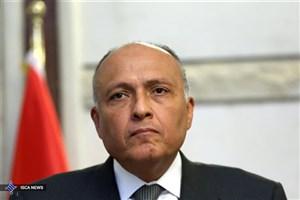 تاکید وزیر خارجه مصر بر لزوم همکاری بینالمللی برای حل بحران سوریه