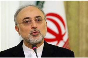 صالحی: کنفرانس سالانه عمومی آژانس برای ایران اهمیت ویژه ای دارد