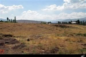 متهم با آتش زدن درختان و از بین بردن منابع طبیعی  زمین خواری می کرد/ متهم  زمین خواری  پردیس  زندانی شد