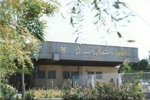 دانشگاه شهید باهنر کرمان دانشجوی دکتری بدون آزمون  می پذیرد