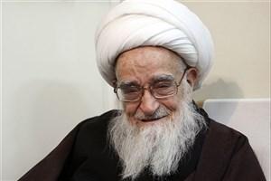 دانشمندان و علمای ایرانی باید با مراکز علمی مصرهمیشه در ارتباط باشند