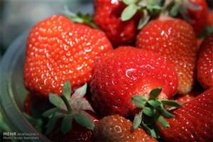 میوه های مناسب برای بیماران مبتلا به دیابت کدامند؟