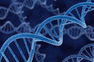 تشخیص زودهنگام سرطان با آزمایش دی ان ای