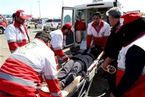 پژو ۲۰۶  در فیروز آباد فارس واژگون شد