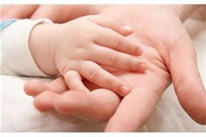ناباروری ۱۵ تا ۲۰ درصدی زوجهایی که در سن باروری هستند