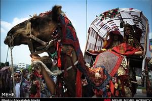 سنت های  عروسی ترکمنی /ازدواجی که نسیه نیست/ زین خلق پُر شکایت گریان شدم ملول