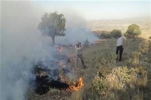 مهار آتش پاسارگاد پس از 50 ساعت با کمک مردم/خسارتی به بنای پاسارگاد وارد نشده است