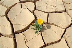 دشت جیرفت تا یک دهه دیگر بیابان خواهد شد