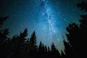 چگونگی و چرایی تاثیر مستقیم نور بر خواب انسان/رابطه تاریکی وخواب راحت