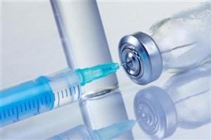 واکسن مننژیت برای همه زائران عتبات اجباری نیست