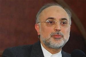 صالحی حضورش در انتخابات ریاستجمهوری را تکذیب کرد