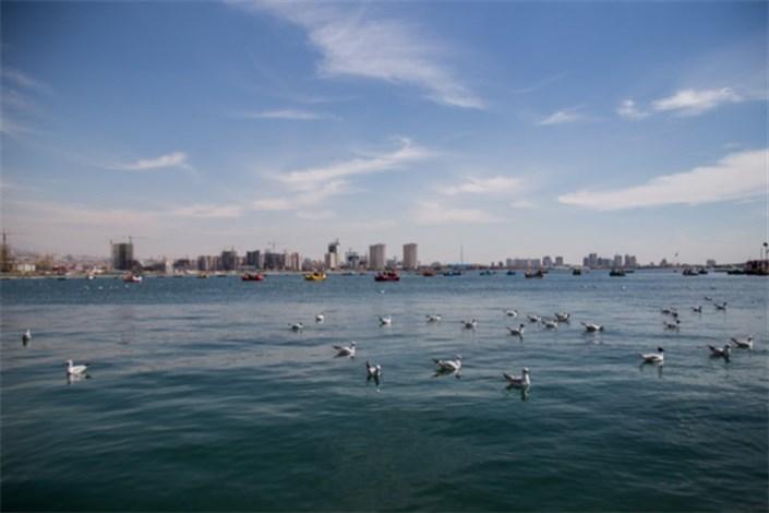 تاج سد دریاچه شهدای خلیج فارس