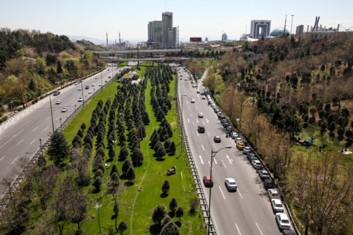 رشد خزنده گونههای مهاجم گیاهی در تهران