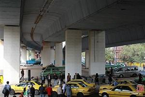مهربانی رانندگان تاکسی زیرپل سید خندان به کبوترهای چاهی