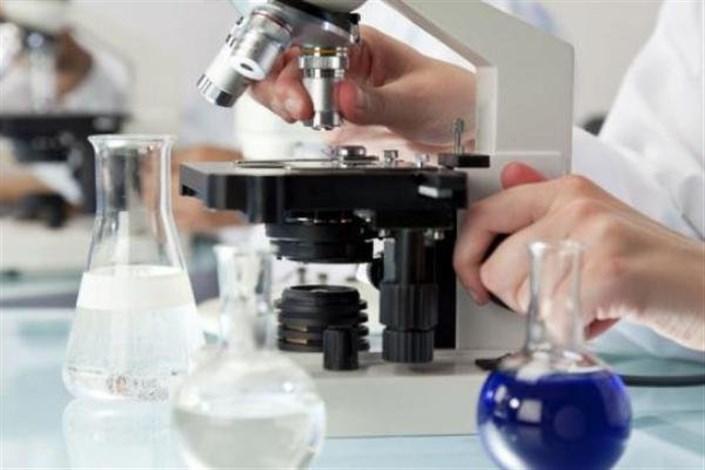 ثبت جهانی دو عامل مهم سرطان مری و معده توسط محققان ایرانی
