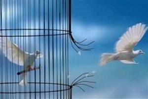 ۱۷ نفر از محکومین مالی آزاد شدند/ با مرخصی پایان حبس  ۱۳  مددجو موافقت شد