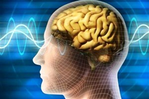 تاثیر باورنکردنی ورزش منظم روی مغز